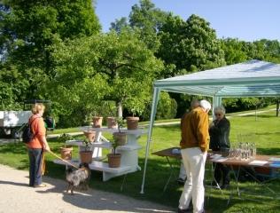 13. Mai 2012: Verkauf von Apfelbrand und Mirabellengeist sowie von Zierobst in Scherben im Herrschaftlichen Obstgarten